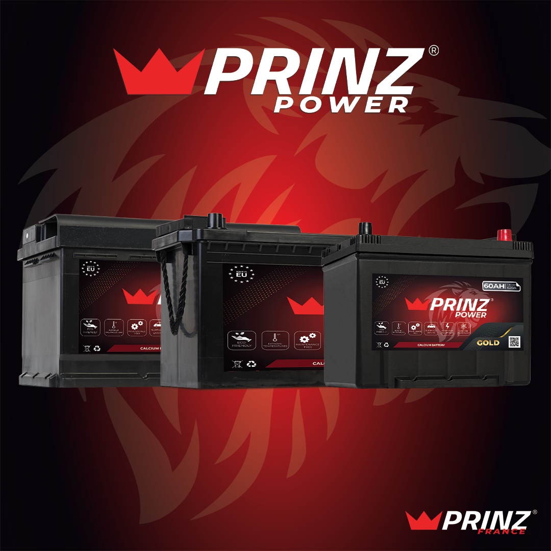 PRINZ Power Batteries